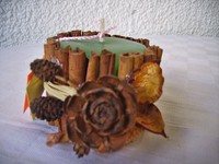 Candle with cinnamon and pine cone-13