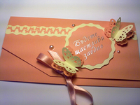 Wedding envelope for money-17